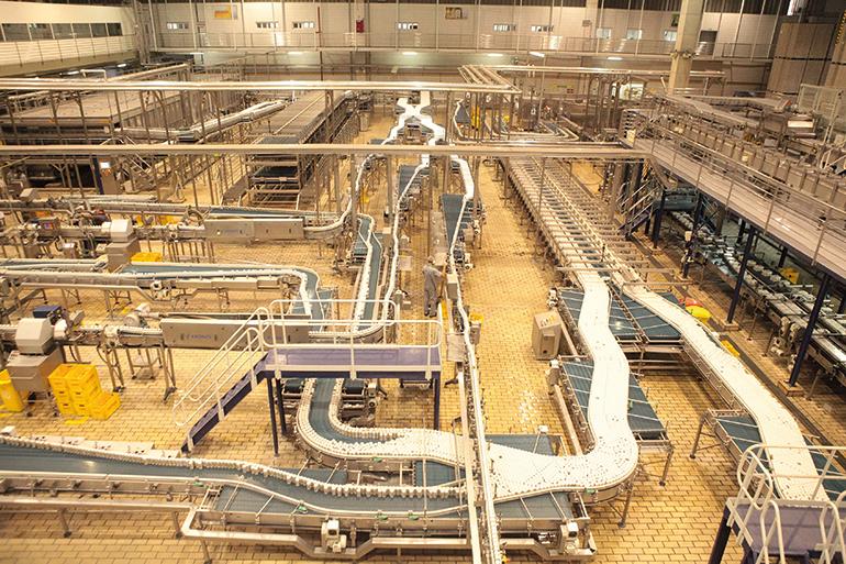 Fabrica Grupo Petrópolis